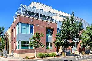 Browse active condo listings in THE WALNUT
